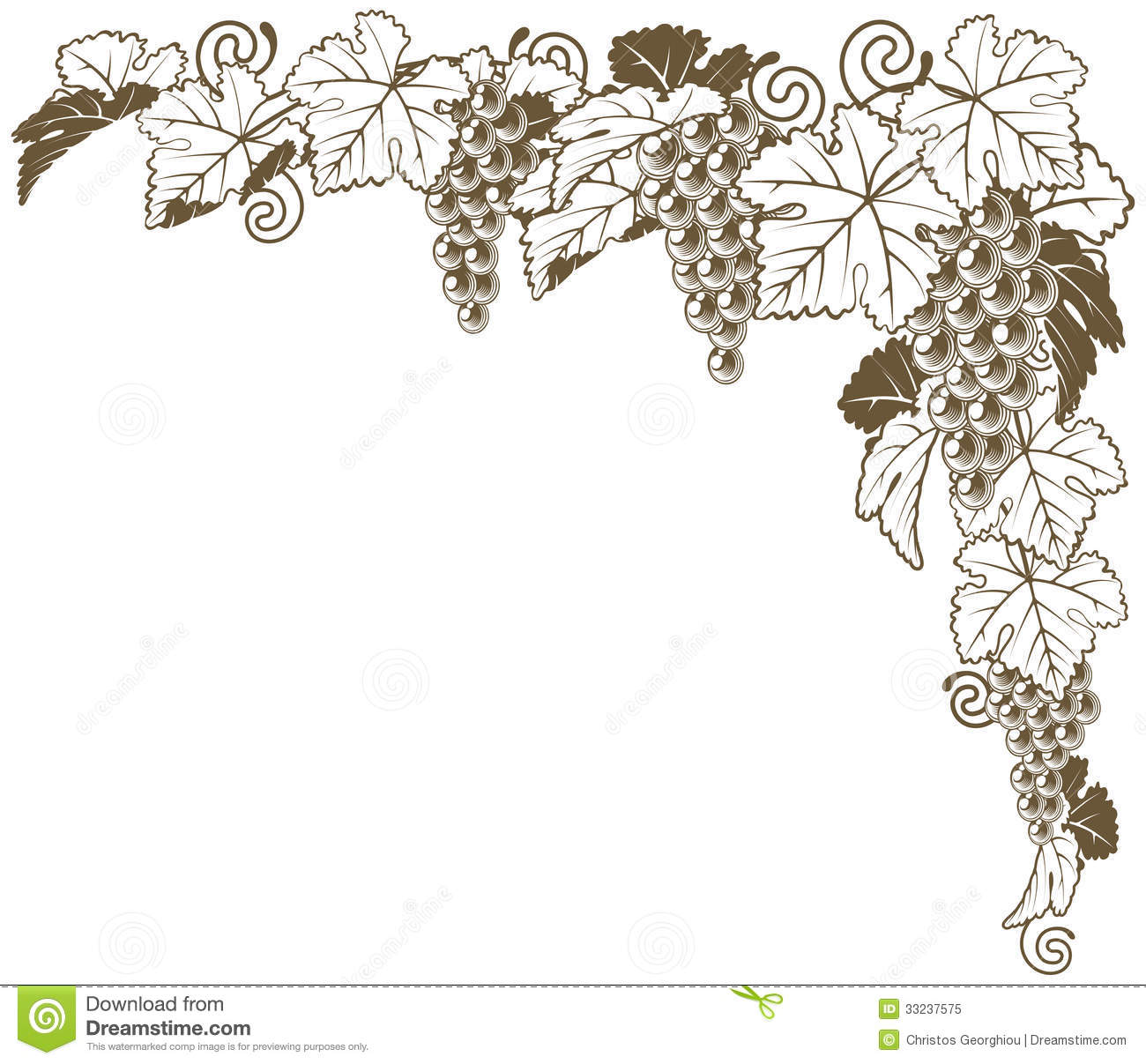 Grape Vine Corner Ornament Royalty Free Stock Photo   Image  33237575