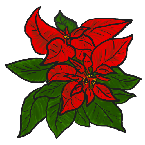 13 Christmas Poinsettia Clipart   Free Cliparts That You Can Download