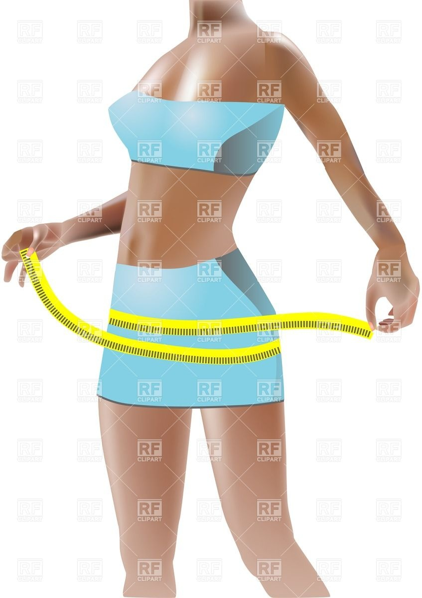 Girl Measuring Her Hips People Download Royalty Free Vector Clip Art
