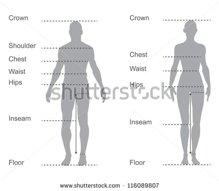 Size Chart Measurement Diagram Of Male And Female Body Measurements