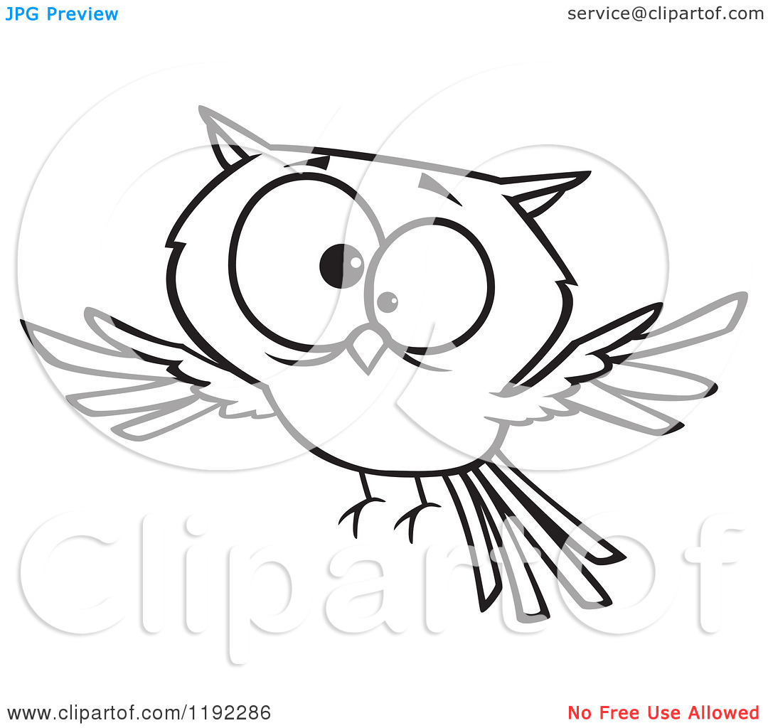 Flying owl drawings black and white - photo#19