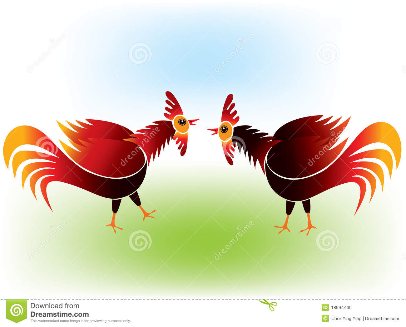 Cock Fighting Stock Photo   Image  18994430