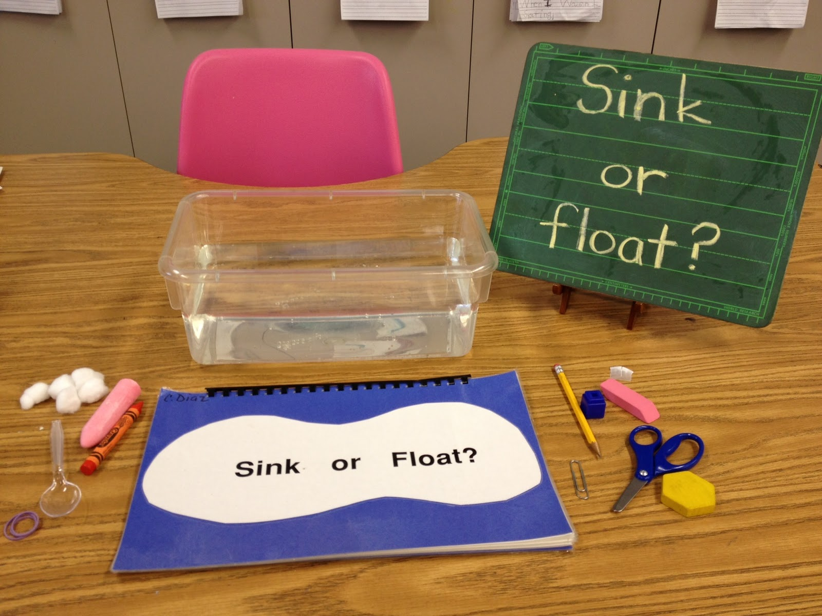 Items And The Kids Are Supposed To Predict If It Will Float Or Sink