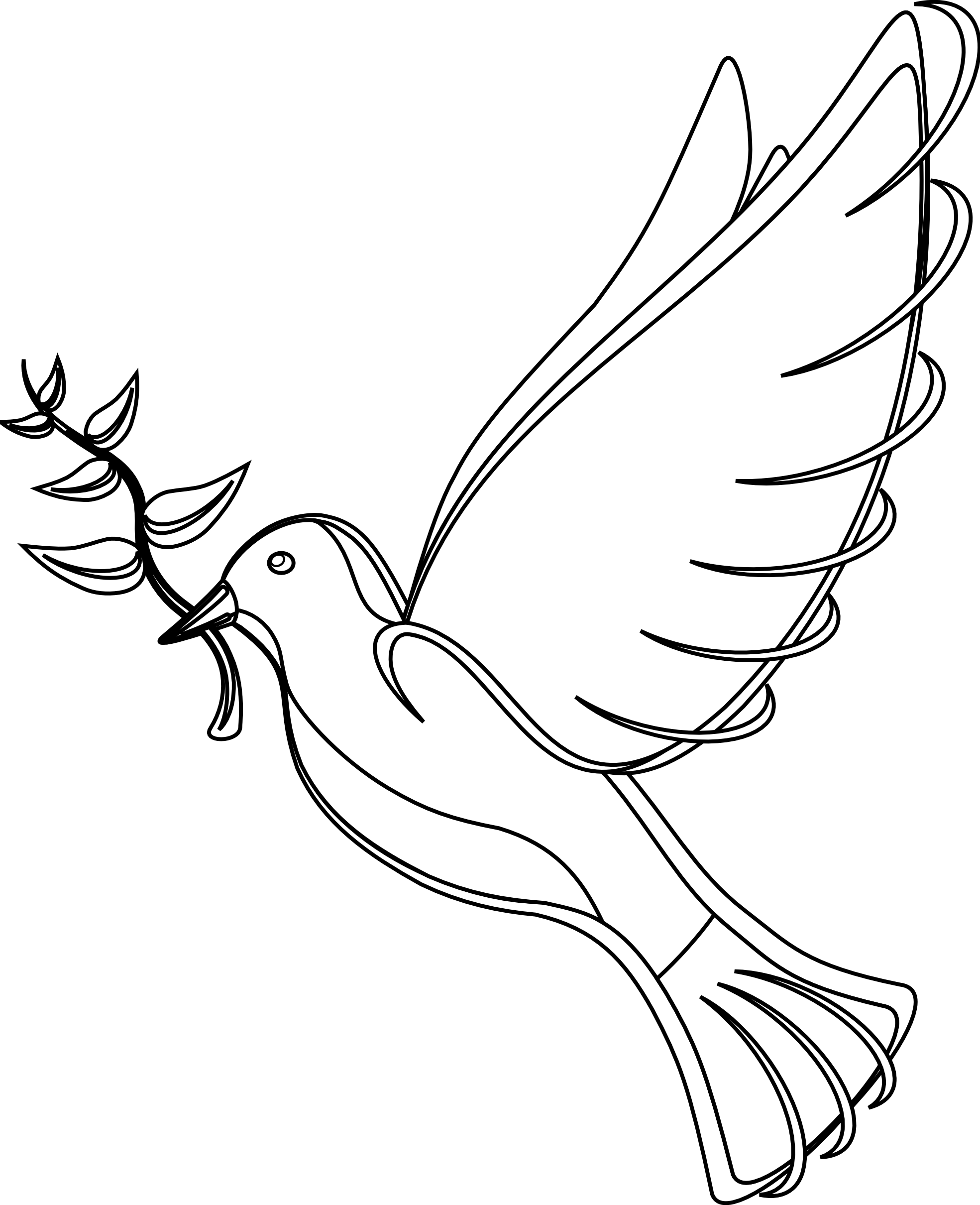 Line Drawing Dove : Black and white peace dove pictures to pin on pinterest