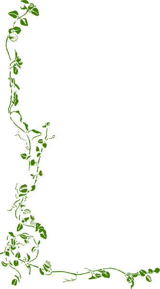 Green Ivy Clip Art At Clker Com   Vector Clip Art Online Royalty Free