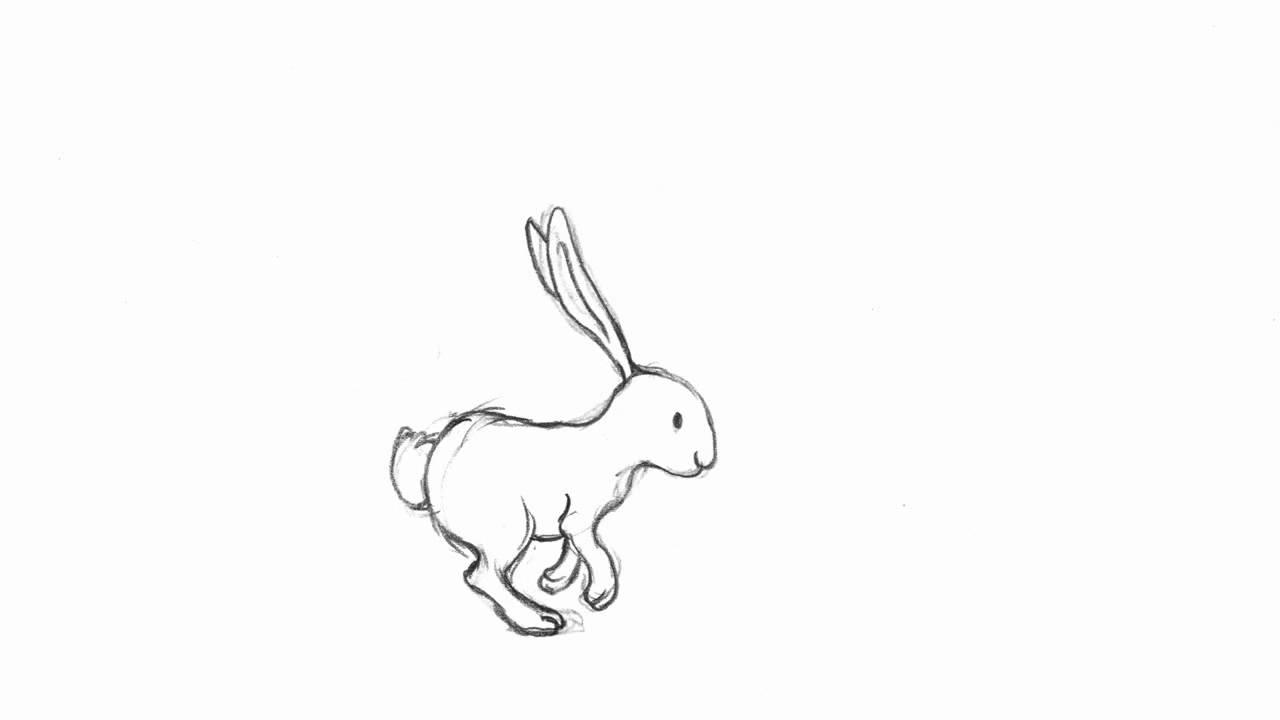 Running Rabbit   Pencil Test   Youtube