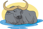 Free Buffalo Clipart   Clip Art Pictures   Graphics   Illustrations