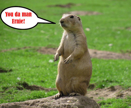 Go Back   Gallery For   Black Tailed Prairie Dog Drawing