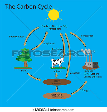Clipart   The Carbon Cycle  Fotosearch   Search Clip Art Illustration