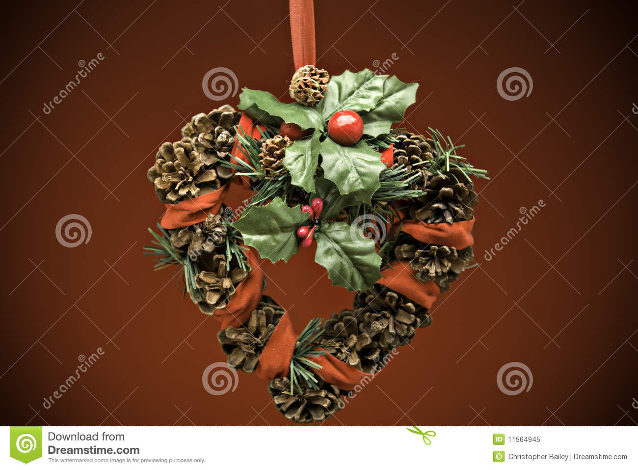 Christmas Reef Royalty Free Stock Photo   Image  11564945