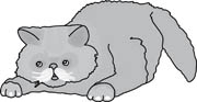 Gray And White Animals Clipart And Graphics