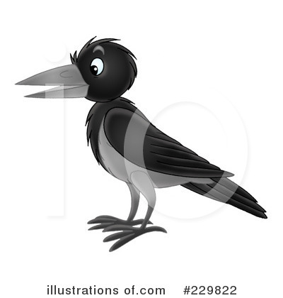 Crow Clip Art Black And White Royalty Free  Rf  Crow Clipart