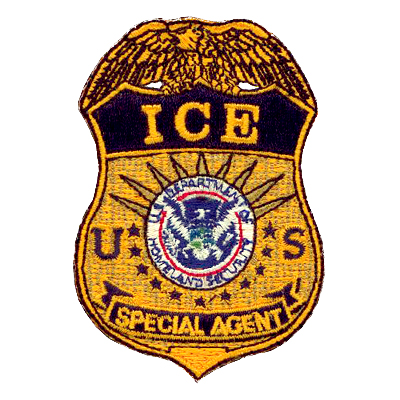 Ice Special Agent Badge