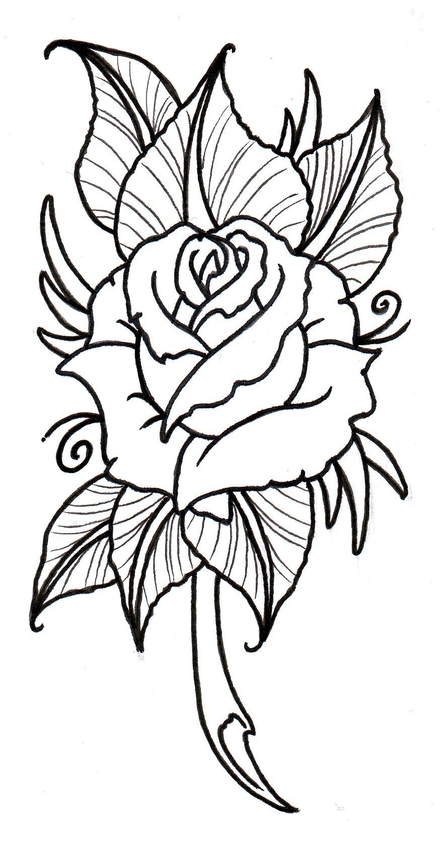 Neo Traditional Rose Outline By Vikingtattoo Designs Interfaces Tattoo