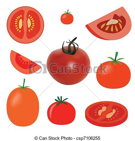 Slice Of Tomato Clip Art Tomato