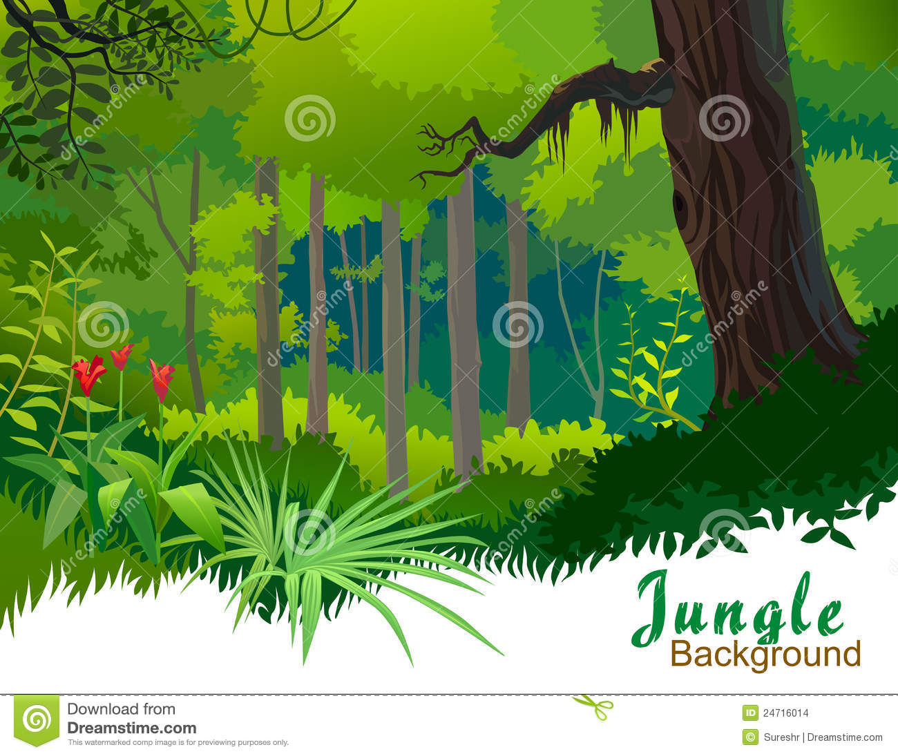 Displaying 16  Images For   Rainforest Tree Clipart