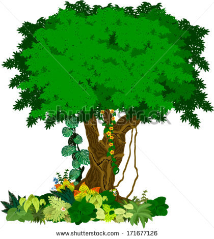 Rainforest Trees Clipart Clipart Panda Free Clipart Images