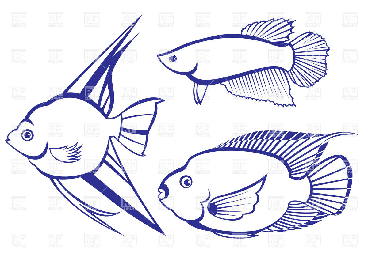 Tropical Fish Outline Download Royalty Free Vector Clipart  Eps