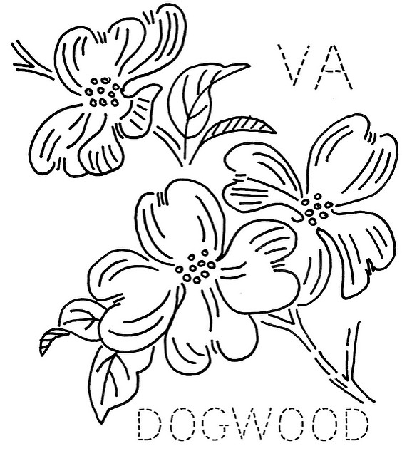 dogwood tree coloring page - virginia dogwood tree clipart clipart suggest