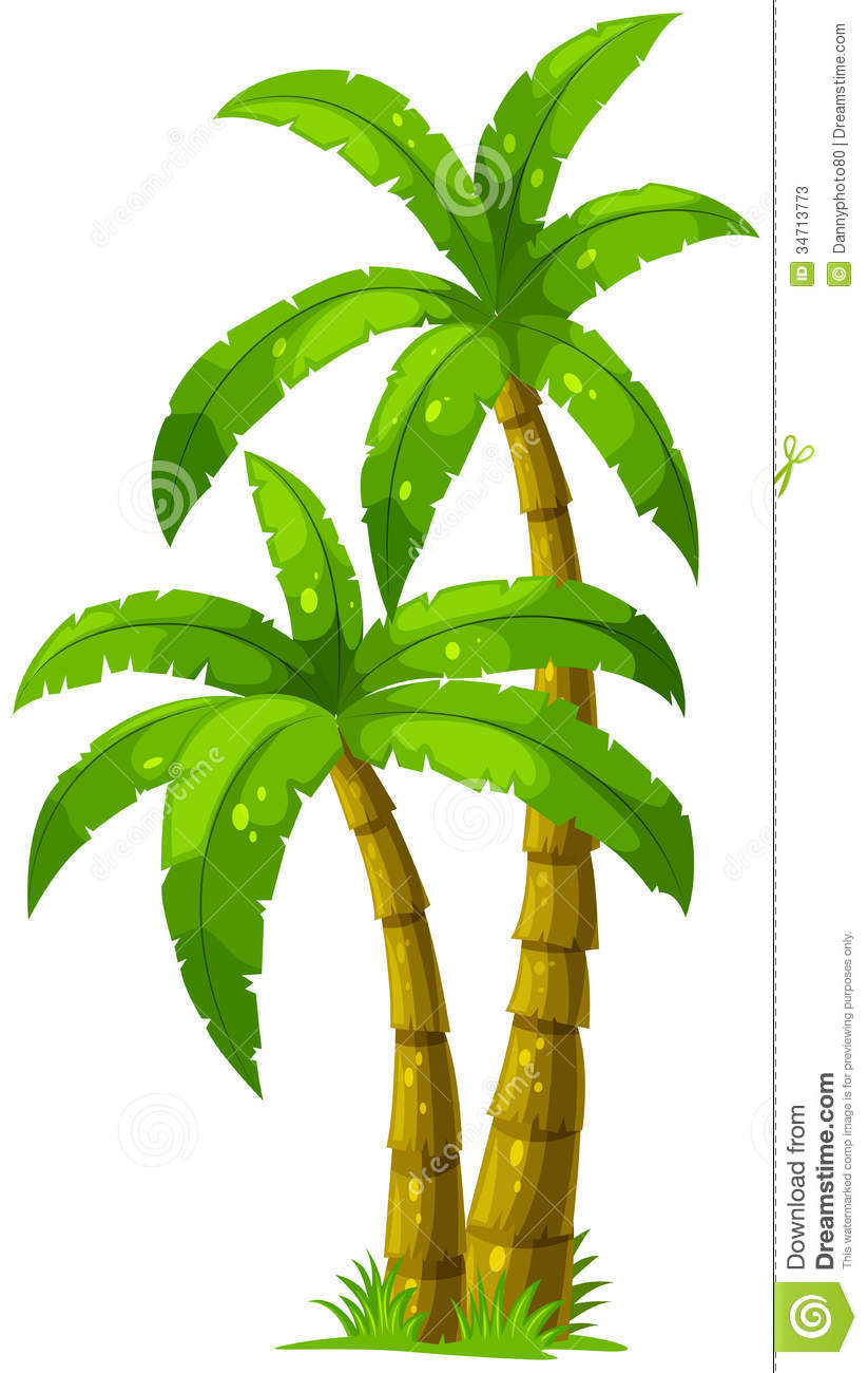 palm tree clip art - photo #43