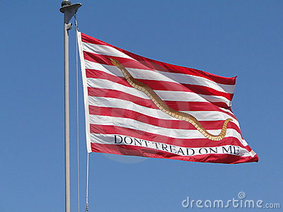 Flag Don T Tread On Me Flying On Amphibious Assault Ship Bonhomme