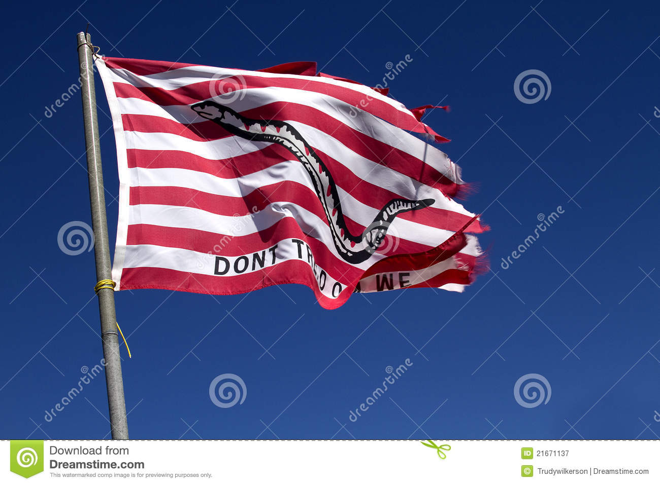 Flag   Don T Tread On Me Royalty Free Stock Photography   Image