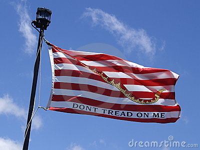 The American Revolution S Don T Tread On Me Flag At Pearl Harbor