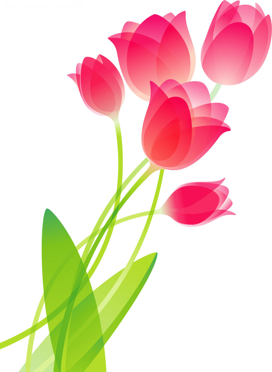 Flower Drawing Wallpaper Clipart - Clipart Kid