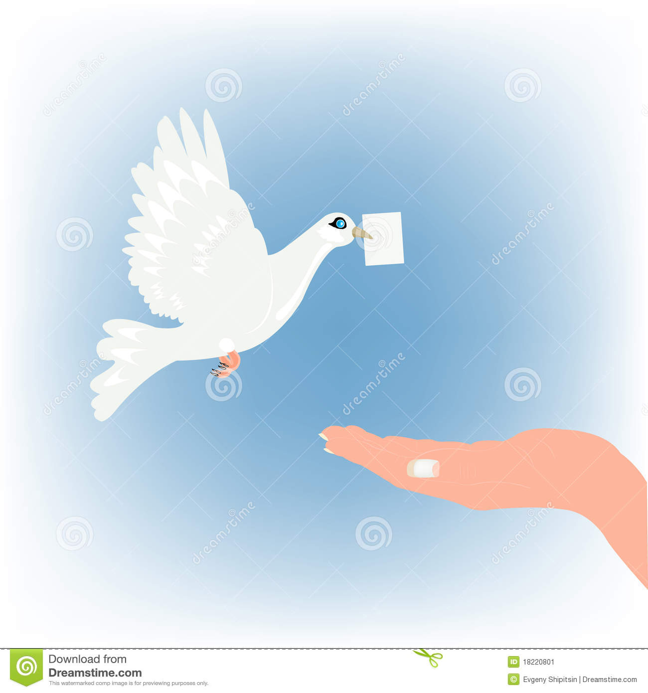 Dove Carrying Letter And Stretching Feminine Palm Stock Image   Image