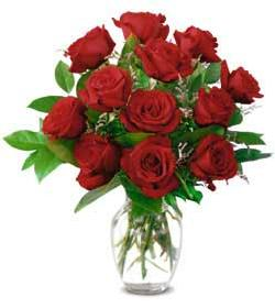 Funmozar   Valentines Day Roses Clipart