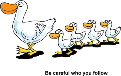 Image  Ducks In A Row   Be Careful Who You Follow   Christart Com