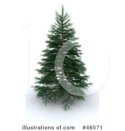Evergreen Tree Clipart  46571 By Kj Pargeter   Royalty Free  Rf  Stock