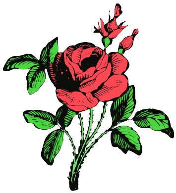 Find Clip Art Roses