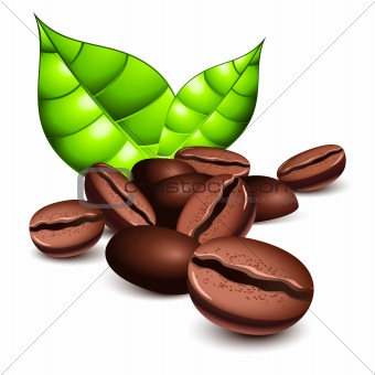 Image Description  Coffee Beans And Leaves