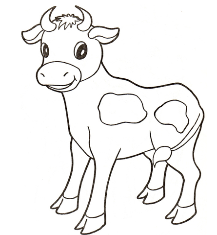 Longhorn Cow And Calf Coloring Page   Color Your Own   Coloring