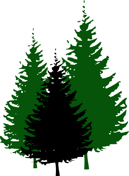 Clip Art Evergreen Tree Clipart evergreen tree free clipart kid trees clip art vector online royalty public domain