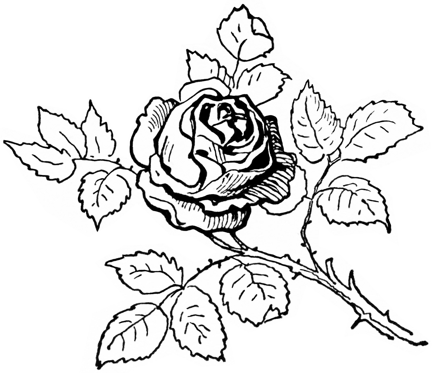 Black And White Clip Art Digital Rose Graphic Printable Rose Image