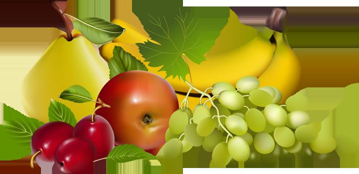 Fruit Basket Clipart - Clipart Kid
