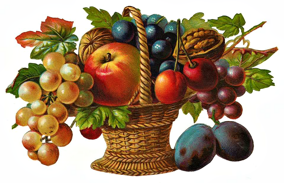 Fruit Basket Clipart - Clipart Kid