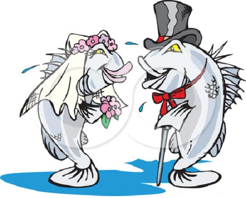 funny wedding clipart free - photo #16