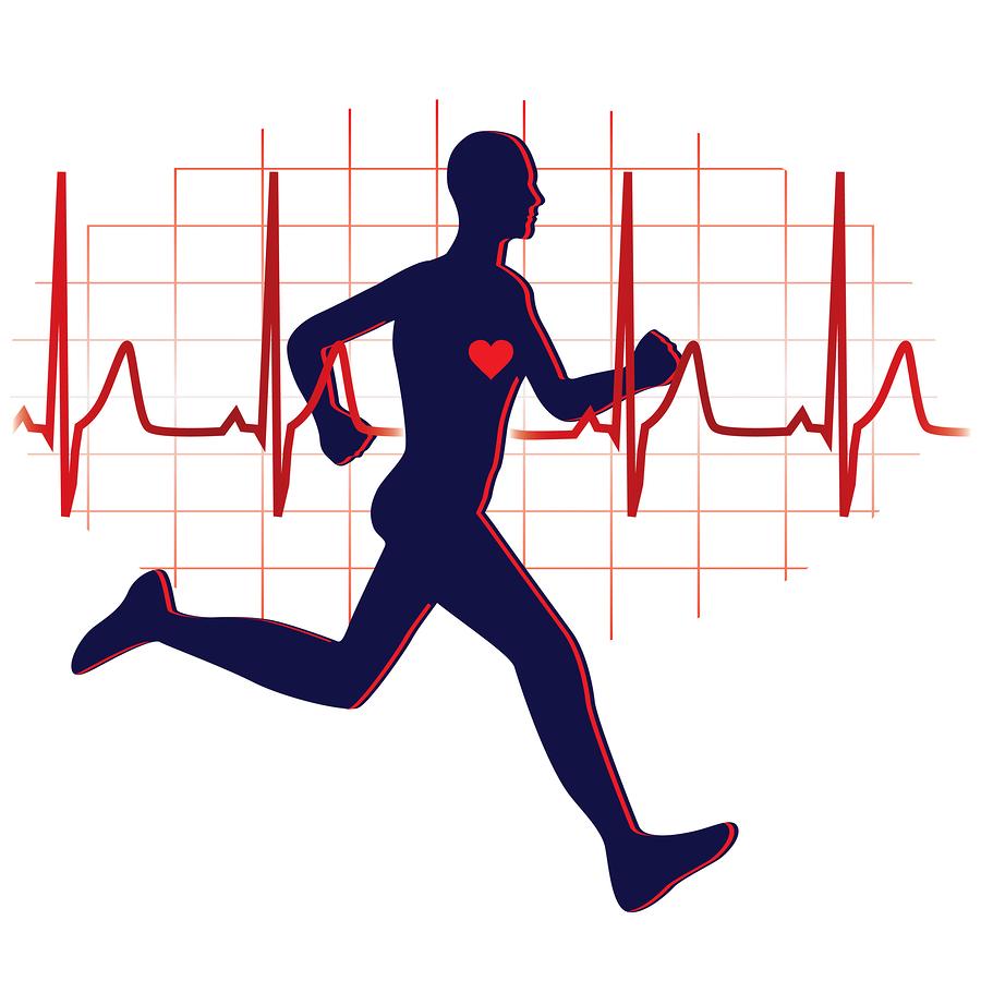 Cardiovascular Endurance Clipart - Clipart Kid