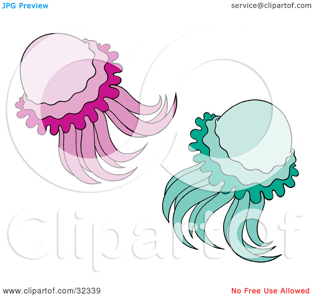 Clipart Illustration Of Two Green And Purple Jellyfish Swimming By