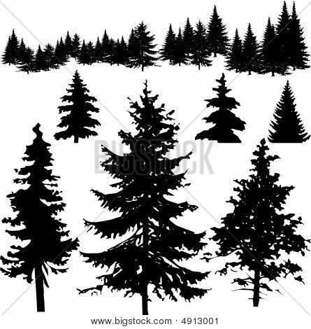 Plantilla para pines