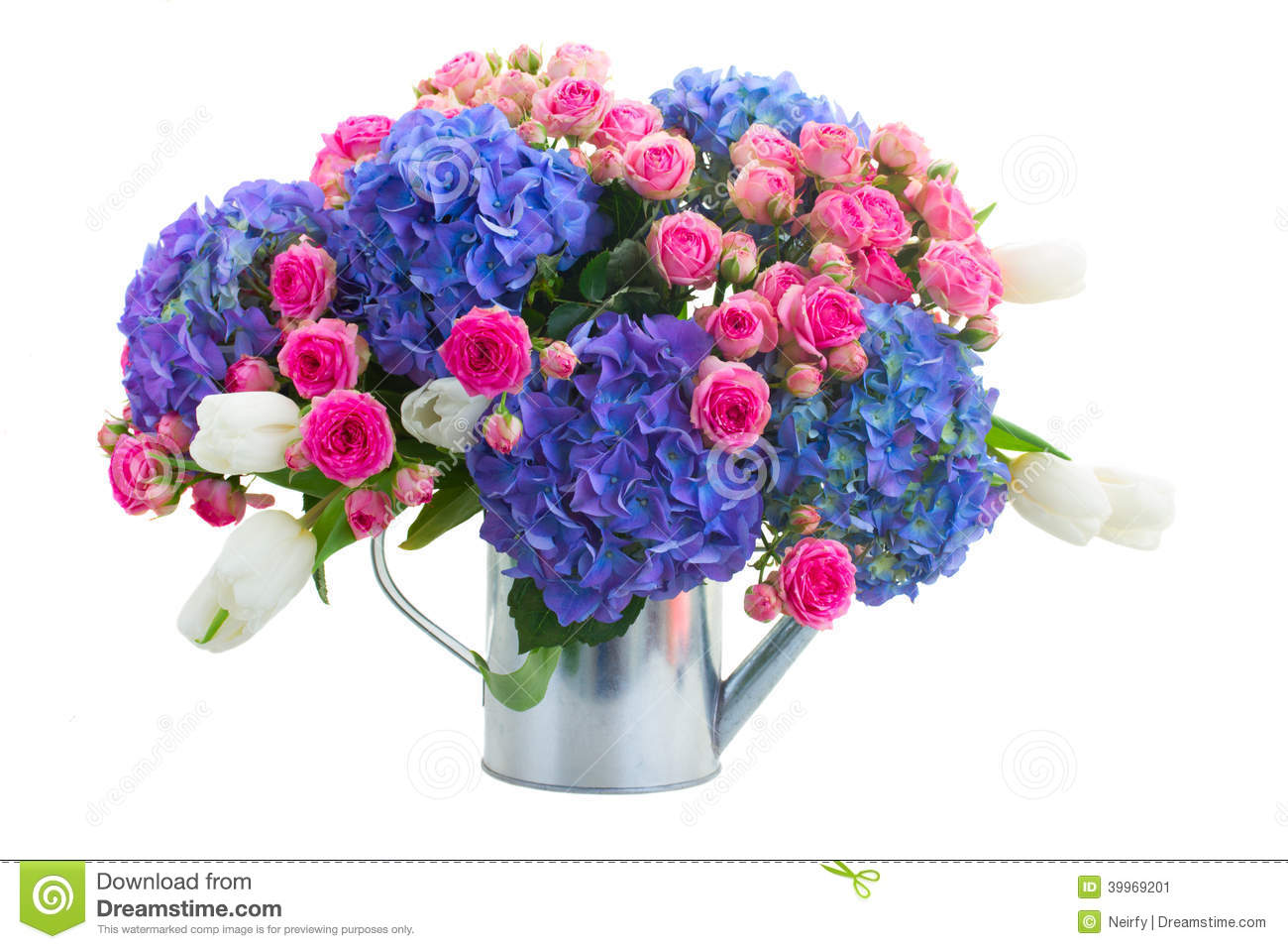 Pink Roses And Blue Hortensia Flowers Isolated On White Background