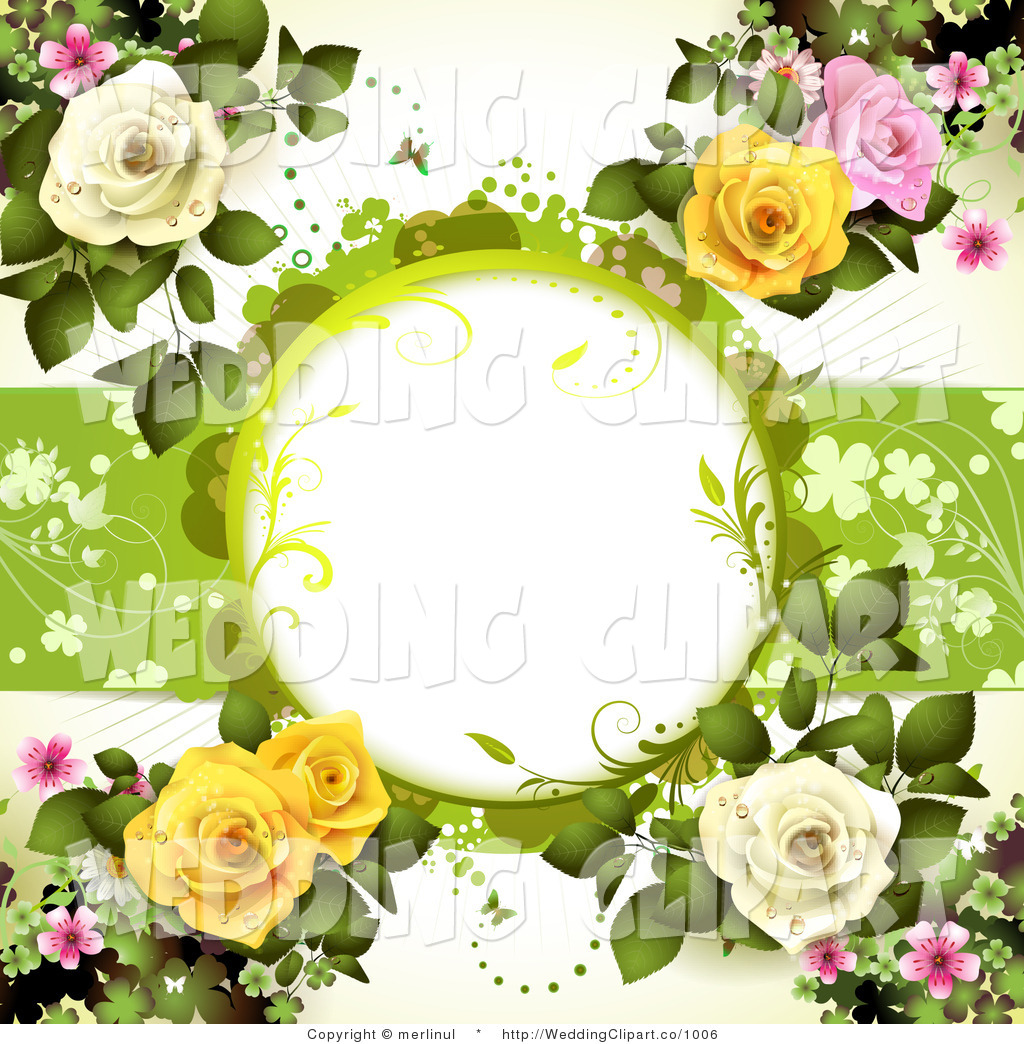 White Dewy Roses And Copyspace Wedding Background With Pink And White