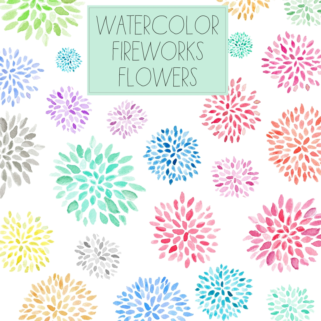 Fireworks Clipart Transparent Background Watercolor Flower Clip Art