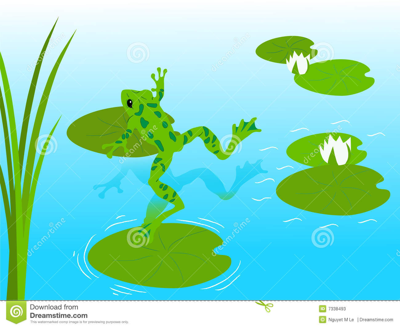 free clipart fish pond - photo #29