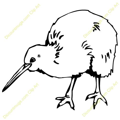 Line Drawing Kiwi : Kiwi bird clipart suggest