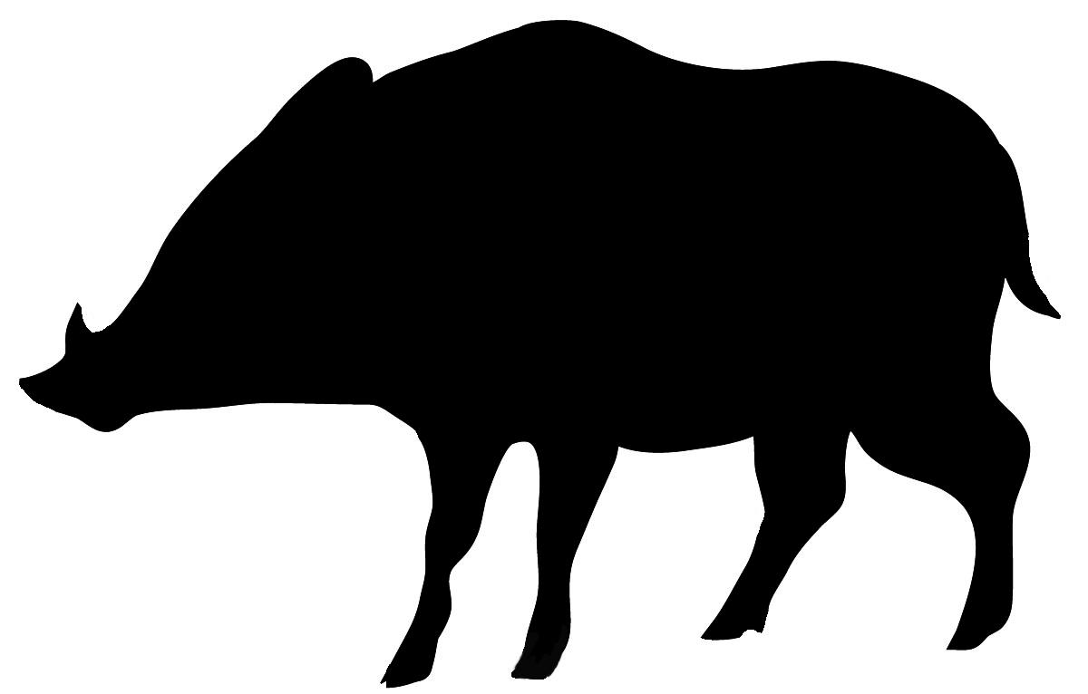 Clip Art Hog Clipart wild hog clipart kid boar cliparts co