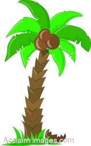 Hawaiian Palm Tree Clip Art   Clipart Panda   Free Clipart Images